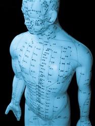 Chiropractor In Hoffman Estates Acupuncture In Hoffman Estates Healing Touch Chiropractic Acupuncture